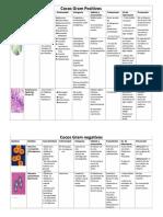 Bacterias - word.docx