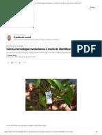 Como a tecnologia revolucionou o modo de identificar as árvores _ VEJA.com