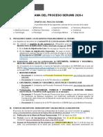Cronograma SERUMS 2020-1 v8.pdf · versión 1 (1).pdf