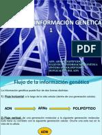 12 FLUJOINFOGENETICA1FINAL