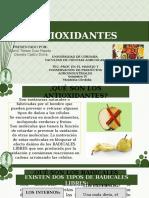 Presentación1 ANTIOXIDANTES