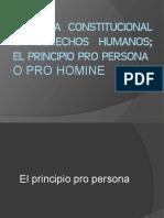 REFORMA CONSTITUCIONAL EN DERECHOS HUMANOS