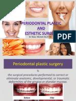 periodontalplasticandestheticsurgeryffcopy-191230063015.pdf