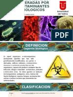 ENFERMEDADES GENERADAS POR CONTAMINANTES BIOLOGICOS (1).pptx