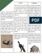 NOTA DE ANIMALES