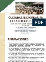 1 CULTURAS INDIGENA EN EL CONTEXTO CARIBE _2_(1)