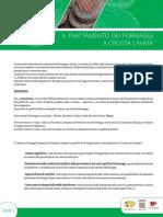 65143045_fiche pef soin croute morgee Italie WEB