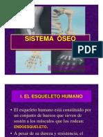 SISTEMA OSEO 3ero.pdf