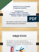 EXPOSICION PRESUPUESTO PUBLICO