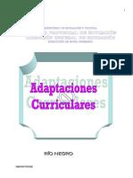 Adecuaciones_Curriculares.pdf