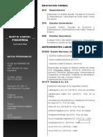CV Martin Gabriel Figueroa.docx