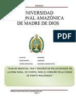 PLAN_DE_NEGOCIOS_CRIA_Y_ENGORDE_DE_POLLO (1)