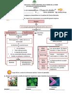 Clasificación de los seres vivos. 3° (2).pdf