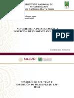 Presentacion-INRLGII
