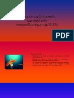 PDF Inmunofluorecencia