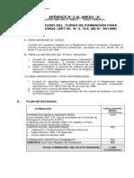 piloto_regional.pdf