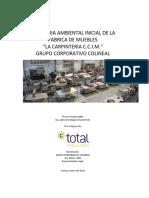 AUDITORIA AMBIENTAL INICIAL DE LA FABRICA DE MUEBLES LA CARPINTERIA C.C.I.M. GRUPO CORPORATIVO COLINEAL