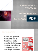 Embriogenesis Temprana