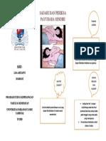 leaflet sadari dan periksa payudara