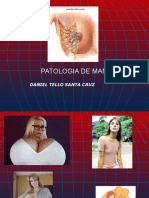 PATOLOGIA DE MAMA USJB 2018