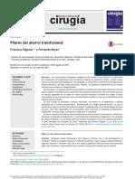 pilares del ahorro transfusional.pdf