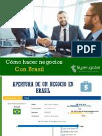 Negocios-con-Brasil