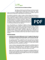 Resumen_ejecutivo_metodos_no_destructivos_en_mangos