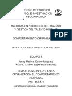 COMO INFLUYE EN LA ORGANIZACIÓN EL COMPORTAMIENTO INDIVIDUAL