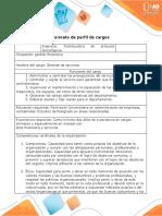 Formato - perfil de cargos
