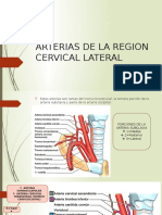ARTERIAS DE LA REGION CERVICAL LATERAL-3