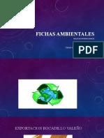 Actividad 7 Evidencia 7.pptx