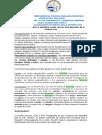MOLECULAS CONSTITUYENTE DE LA MATERIA VIVA
