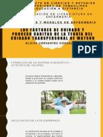 proceso caritas.pptx