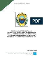 TDR- Plan Prevencion y Reduccion de Riesgo Desastres- Pisco