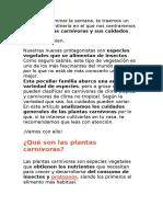 PLANTAS CARNIVORAS.docx