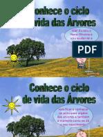 O_ciclo_da_vida