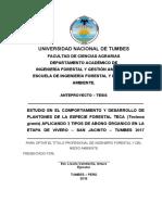 ANTEPROYECTO DE TESIS - TECA