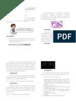 PneumocystisCarinii