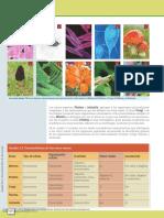 Biología_general_los_sistemas_vivientes_----_(Pg_325--374).pdf