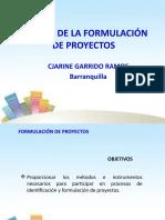 ESENCIA_DE_LA_FORMULACION_DE_PROYECTOS