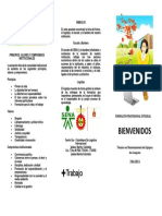 Plegable - Estructura Curricular, principios, valores, símbolos