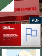 População Brasileira (1) (1)