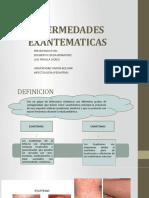 ENFEREMEDADES EXANTEMATICAS Beto y Luis.pptx