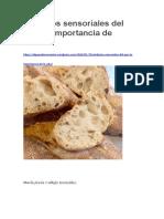 Atributos sensoriales del pan