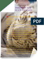 La Historia del tigre blanco