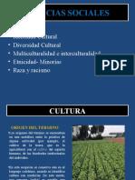 2 clase EPEL. Cultura. Identidad cultural. Diversidad cultural. Multiculturalidad e interculturalidad. Etnicidad-minorias.