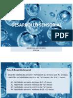 4 DESARROLLO SENSORIAL