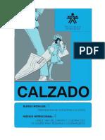 388_estructura_del_zapato.pdf