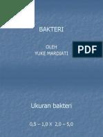 bakterippyuke-1