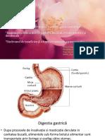 MG III rom Sd clin. gastrită, boală ulceroasă, insuf. pancreatită-pdf.pdf